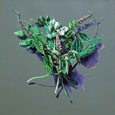 Votive Offering No.97 Snow Pea and Mint