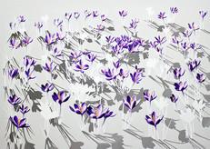 Floresce - A Bursting into Flower