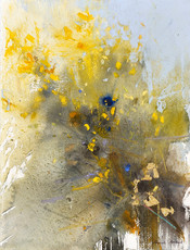 Emerging Colours, Gorse Flowers