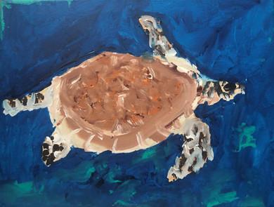 MerlanTh-Vinny-the-Turtle_1.jpg