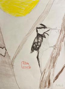 MendozaJe-Woodpecker-Artiste_1.jpg