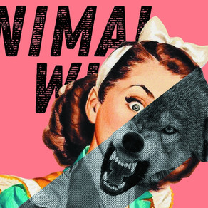 An Inteview with Lara Ehrlich on Animal Wife