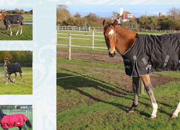 Rhinegold 'Konig' Small Pony/Foal Outdoor Rug