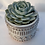 """Thumbnail: 3"""" White Glaze Red Clay Raised Patterned Starter Plant or Cutting Pot"""