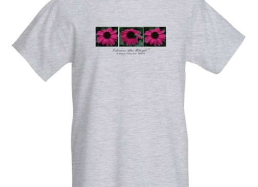 Echinacea 'After Midnight' T-Shirt