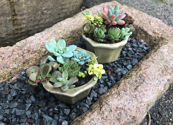 Mini Glazed Clay Container
