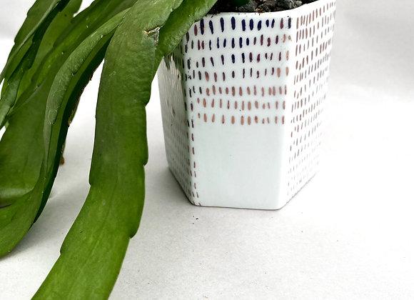 "3"" Rose Gold & White Ceramic Starter Plant or Cutting Pot"