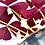 Thumbnail: Oxalis triangularis 'False Shamrock'