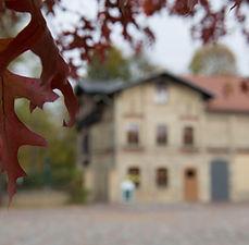 Blätterscharf.jpg