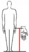 Wrists to Floor-1.png