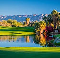 Desert Willow-2.jpg