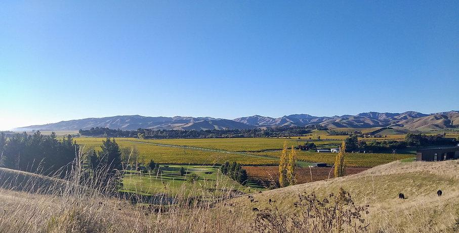 Omaka Valley Marlborough