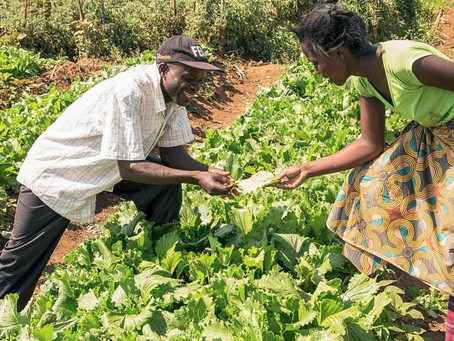 """Cilimba: """"Farmers just want to have funds"""""""