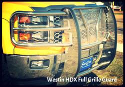 truck accessories yellow truck 016_edited_edited.JPG