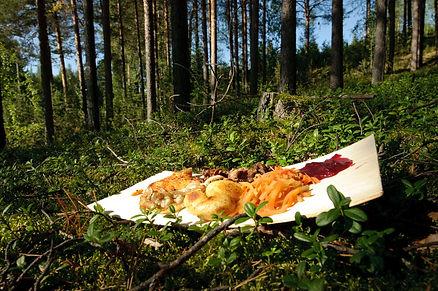 God mat ute i naturen