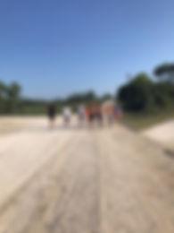 running5.JPG