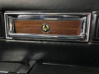 Interior door handle 1.jpg