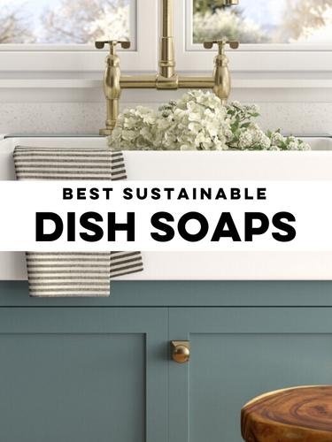 Make a Difference while dishwashing (3).