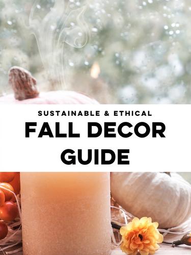 Fall Decor Guide