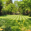 lawn-645x645-300x300.png
