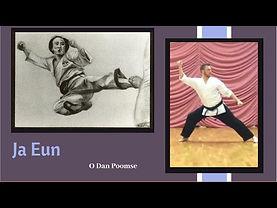 Ja Eun Taekwondo form