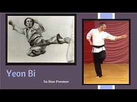 Yeon Bi Taekwondo form