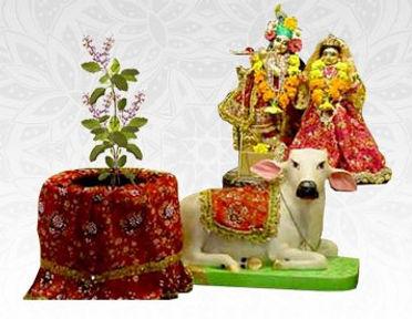 Tulsi-Vivah-Puja-Harivara-Hindi.jpg