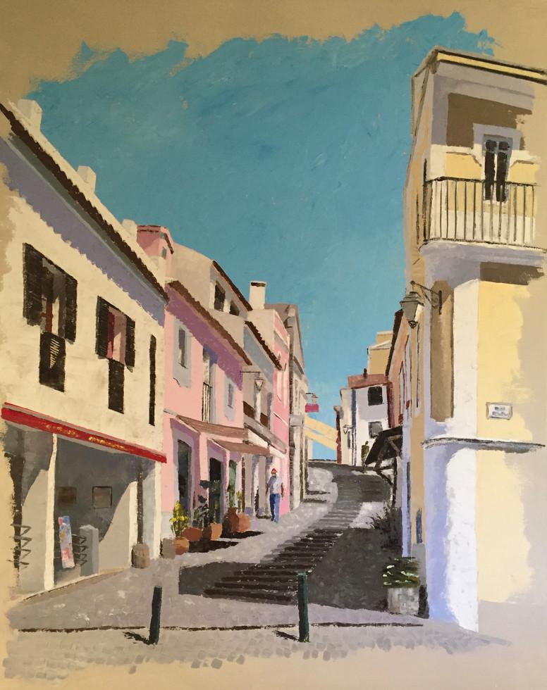 COVID-19 Monchique