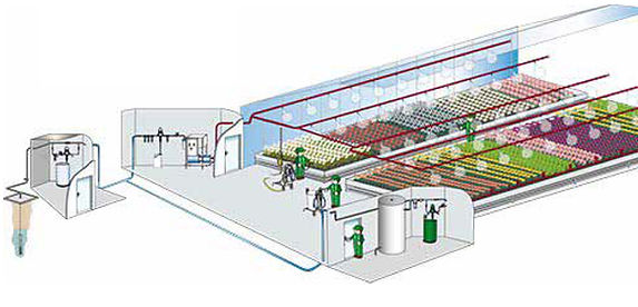 greenhouseillust.jpg