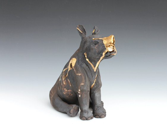 Ayo, Black Rhino, Bleeding For Gold