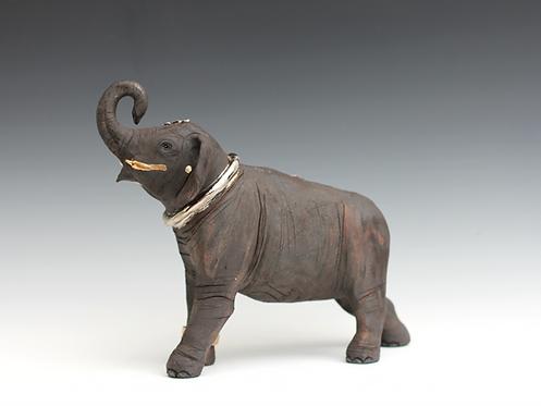 Oorvi, Indian Elephant Calf, Bleeding For Gold.