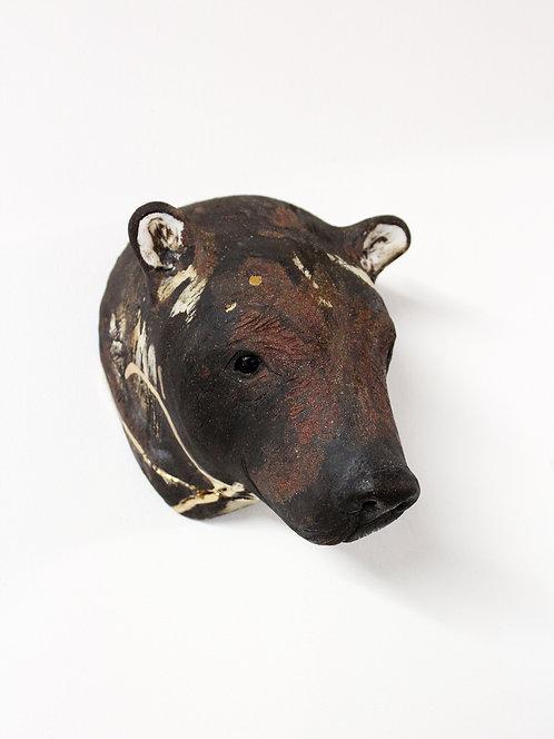 Luna, Asiatic Black Bear Head, Bleeding For Gold.
