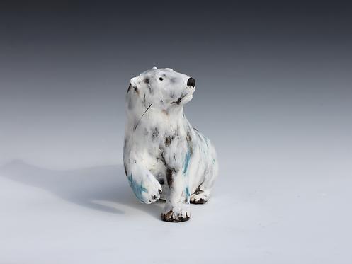 Aput, Polar Bear Cub, Adrift