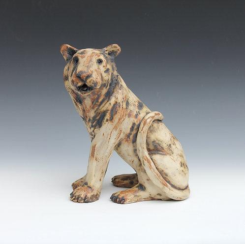 Taj, Indian Tiger, Relic Dynasties