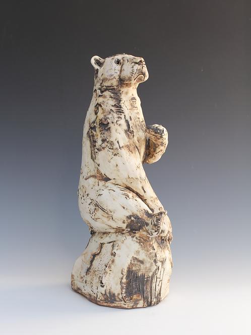 Tundri, Polar Bear, Adrift