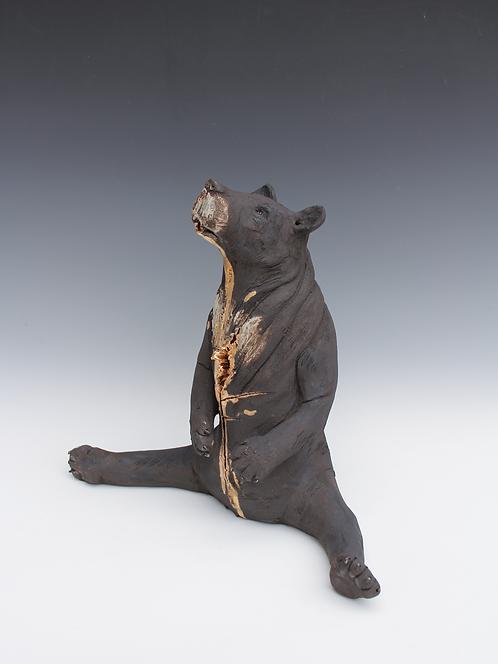 Nudara, Asiatic Black Bear, Bleeding For Gold