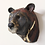 Thumbnail: Lan, Asiatic Black Bear Head, Bleeding For Gold.