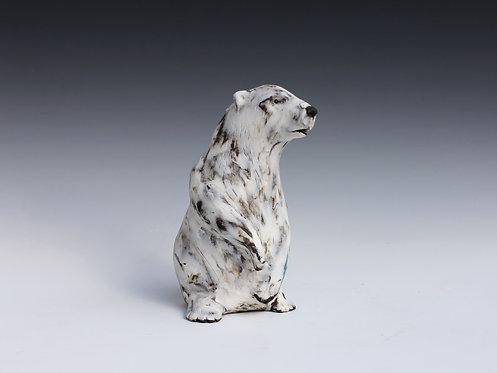 Nivi, Polar Bear Cub, Adrift