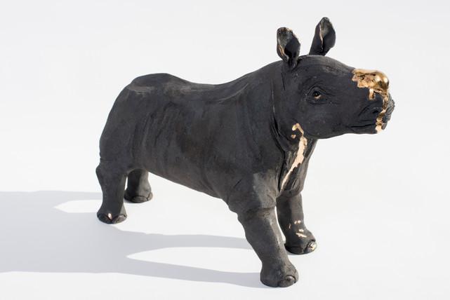 Rashi, Black Rhino, Bleeding For Gold