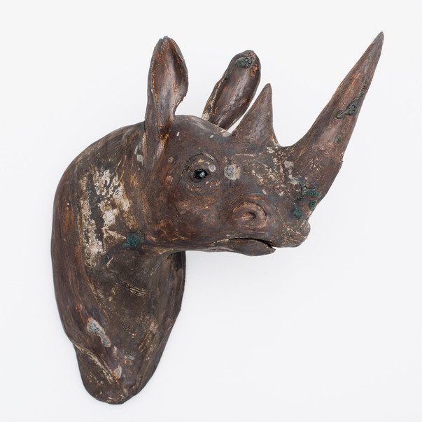 Rohima, Black Rhino