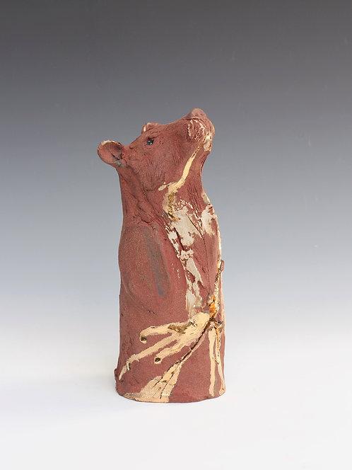 Yuan, Asiatic Black Bear, Bleeding For Gold.