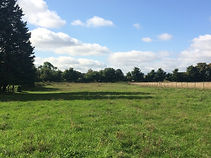 Bullock Field Landscape .jpg