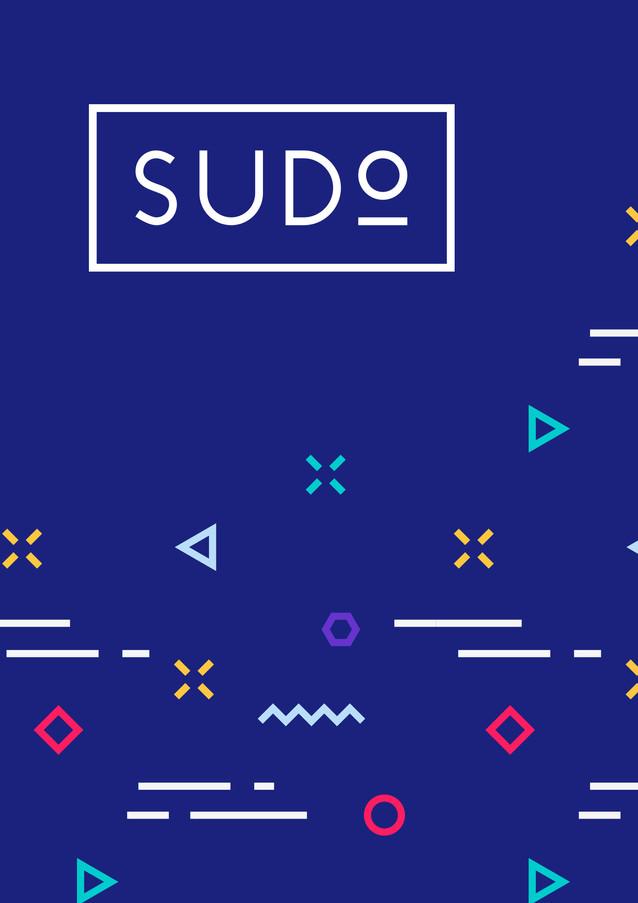 sudo_initialPage.jpg