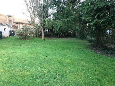 garden 4.jpg