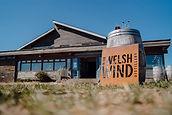 in-the-welsh-wind-1.jpg