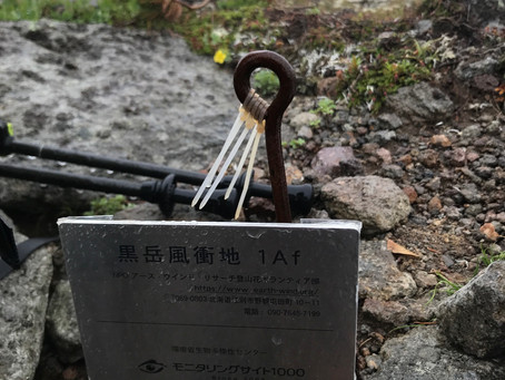 7月11日大雪山黒岳調査地のセミナー完了