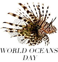 PB_World-Oceans-Day_Thumbnail.jpg