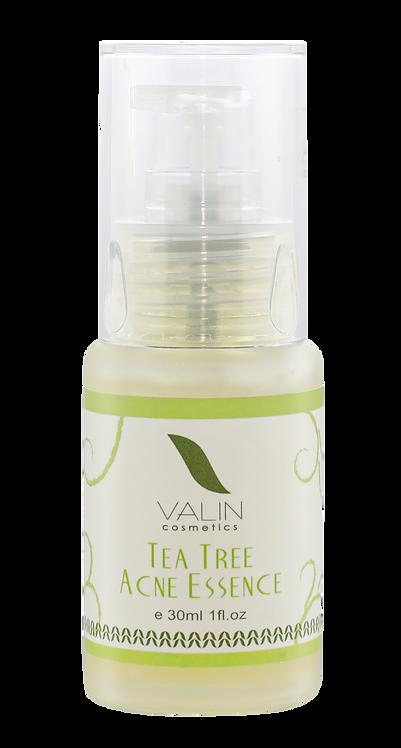 茶樹粉刺精華液