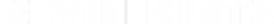 DevinKirtz_Logo_Horizontal_White.png