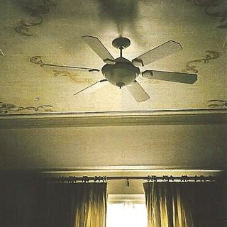 metalic painted ceiling detail